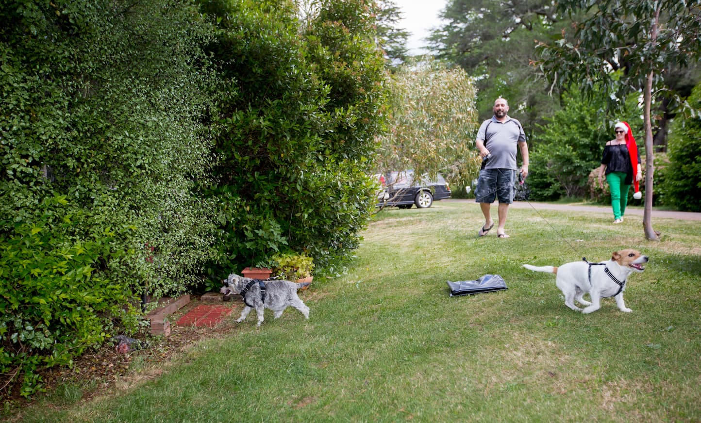 Daylesford Holiday Park Camping Family Fun Dog Friendly